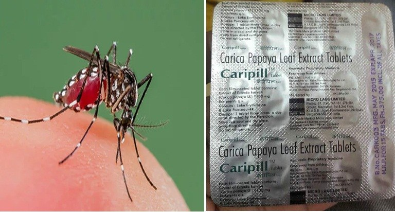 Caripill Papaya Leaf Extract Tablet Cures Dengue in 48 Hours: Fact Check