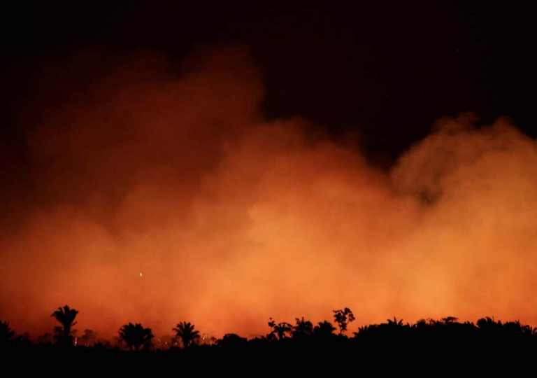Fake Photographs of Massive Fire in Amazon Forest, 2019
