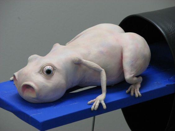 Image of Baby Leelyah, a rod puppet