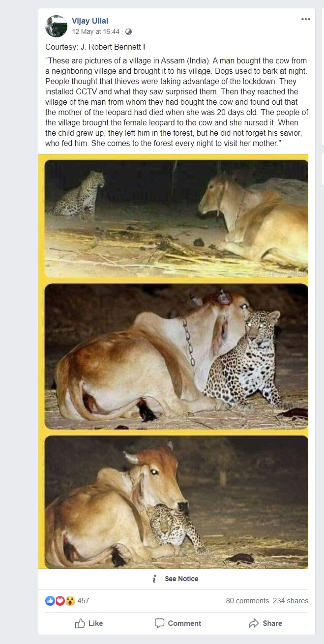 Image of story circulating on social media