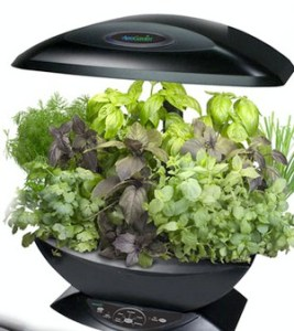 Indoor garden light kit