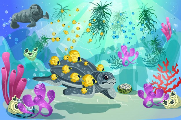 different species of aquatic animals