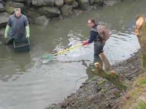 Elektrofischen: Michael Prill und Angelfreunde im Löschteich