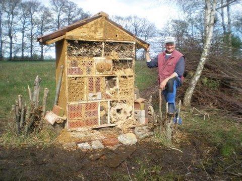 Insektenhotel selber bauen angelblog for Teichanlage selber bauen