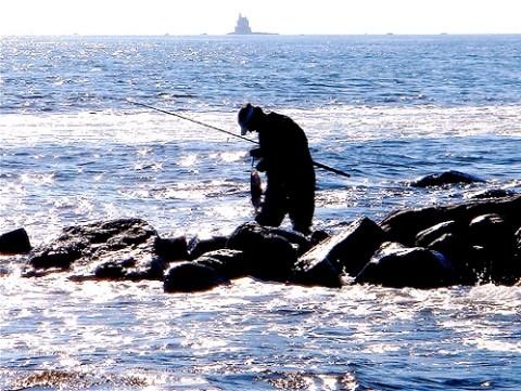Wolfsbarsch angeln von Mole aus