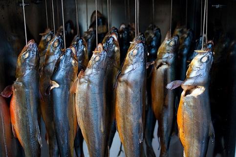 Das Heißräuchern von Fischen wird von Anglern am meisten praktiziert.