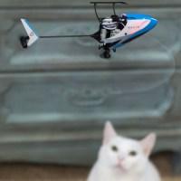 Blade Nano S2 Micro elicottero 3D con sistema SAFE