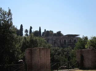 Looking back towards the Palatine Hill where we just were taking pictures