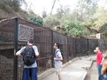 Very humane caging at the old zoo
