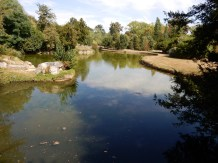 The pond at the Belvedere