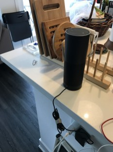 Our Echo in its new home