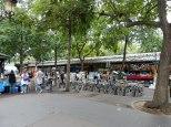 On Sundays, there's a bird market here amongst the flower market vendors