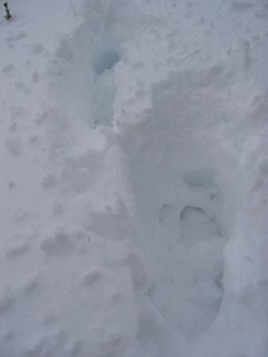 16-061026-16-footprints-2