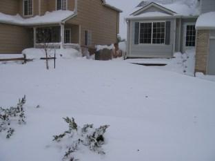 20-061026-20-snowdrift-2