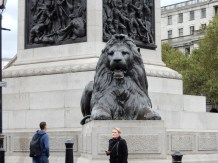 One of the lions in Trafalgar Square
