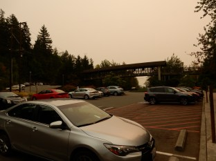 Up at the Salish Lodge, there's a bridge from the other parking lot over the highway