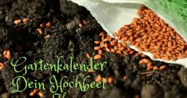 Gartenkalender März Hochbeet