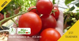 Online-Kongress von Bio-Balkon - Selbstversorgung und Grundlagen biologischen Balkon-Gärtnerns Naschbalkon Balkongärtnern Hochbeet Gemüse Anbau Kistengärtnern | Foto: Bio-Balkon*