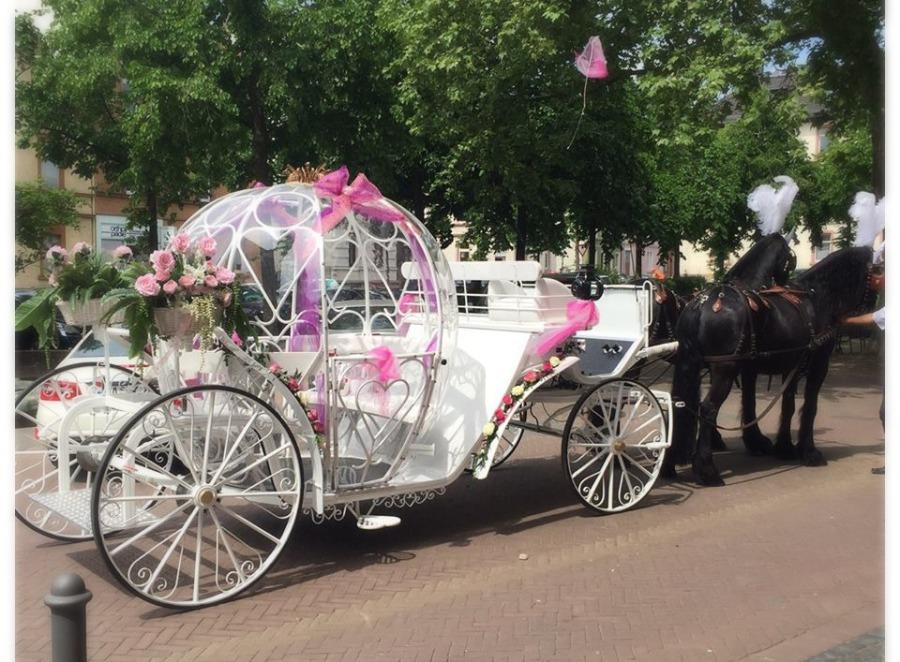Kutsche Hochzeit Ebay Kleinanzeigen