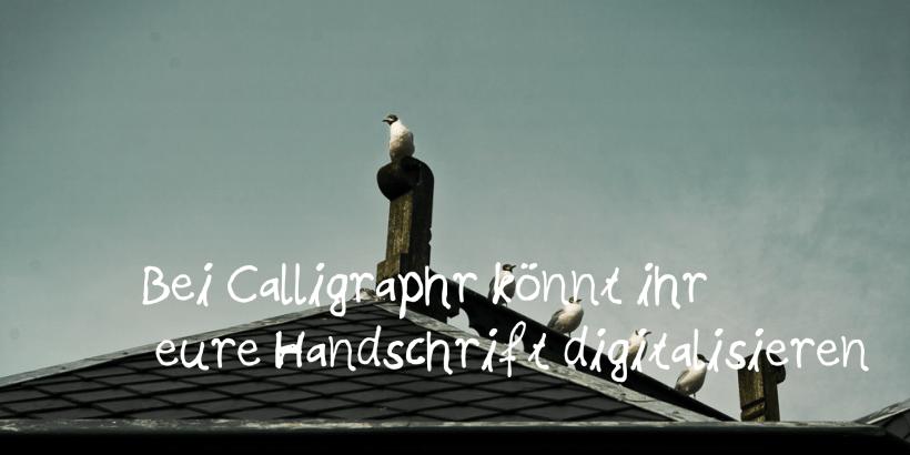 Blog Beitrag Calligraphr