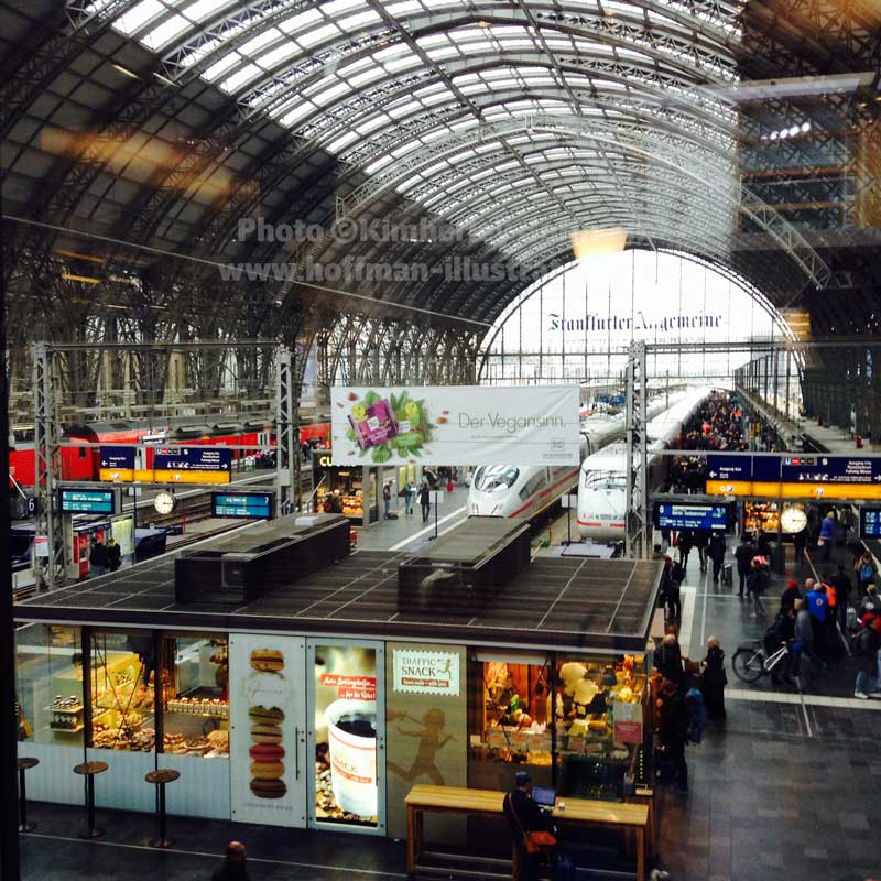 Good Bye Frankfurt (View from the Train Station Lounge)