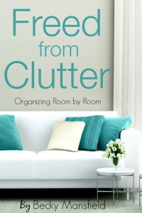 Are you trying to get rid of the storage unit and free your life from clutter? This blog post and the book will help!
