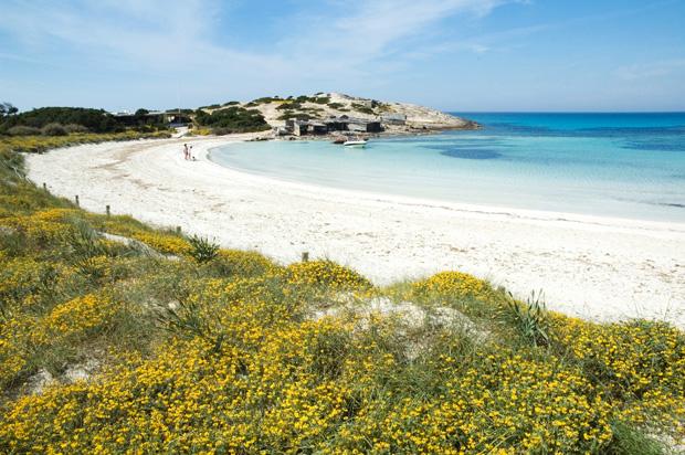 Formentera-verano-2014