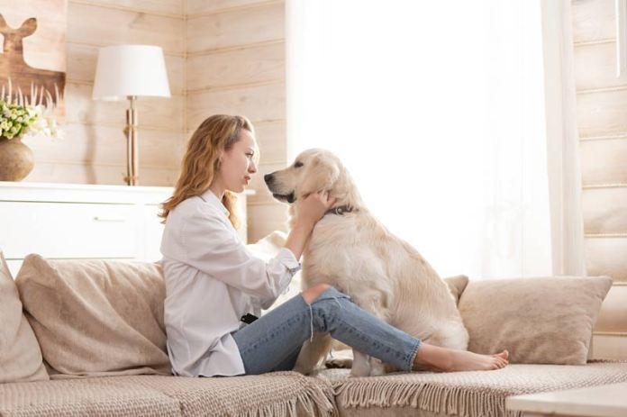 mujer con su perro en el sofá
