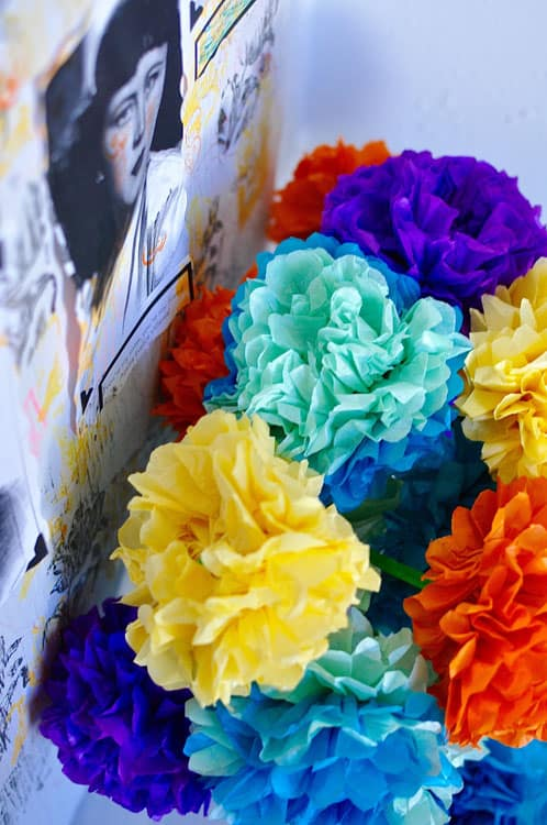 How to make paper flowers for day of the dead hola jalapeohola step by step instructions for making paper flowers for day of the dead mightylinksfo