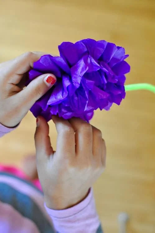 How to make paper flowers for day of the dead hola jalapeohola step by step instructions for making paper flowers for day of the dead mightylinksfo Images