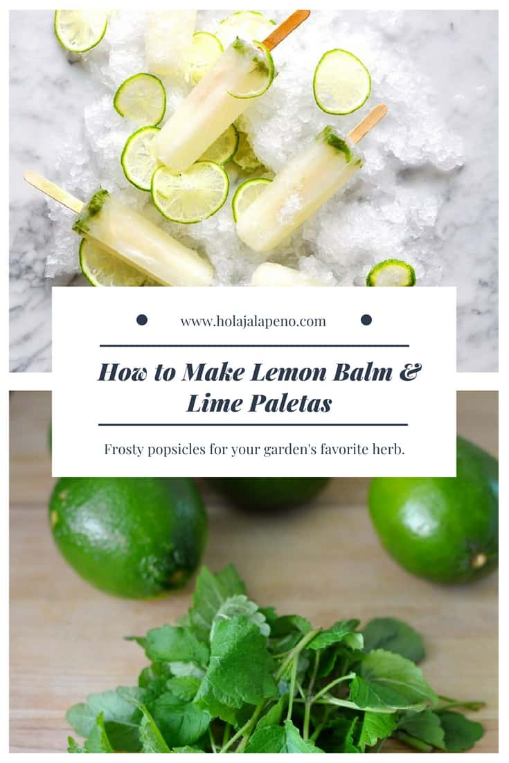These lemon balm and lime paletas are pure popsicle heaven! Just the right amount of sour balanced with a floral herb flavor make these pops addictive. #healthyMexican #lemonbalm #paleta #popsicle #lemonpopsicle #Mexicanpaleta