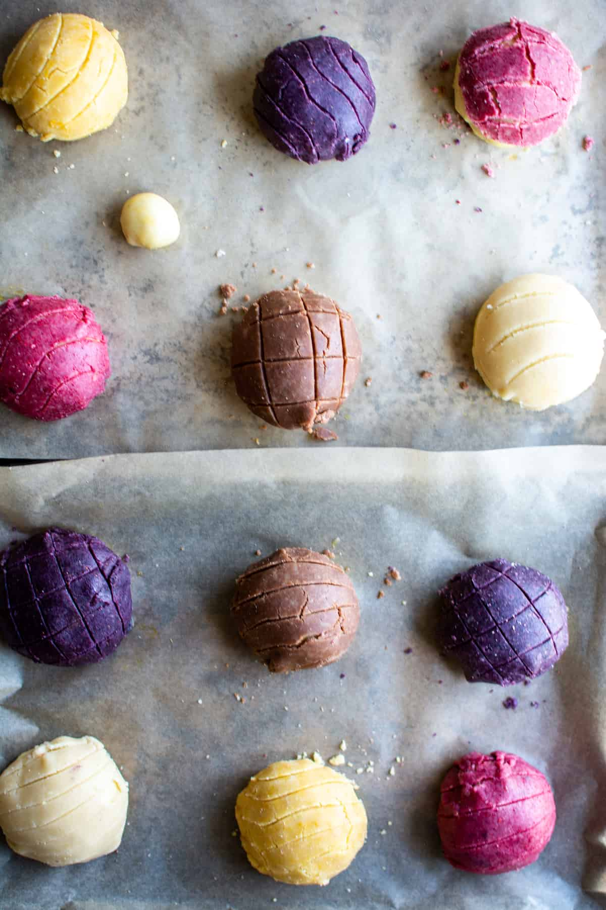 12 Concha rolls of different colors (yellow, purple, pink, brown, and white) sitting on parchment lined baking sheets.