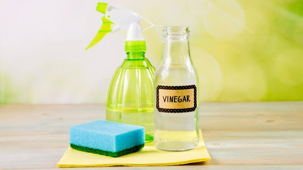 Holar - Blog - 11 Vinegar Cleaning Hacks You Have To Experience It Yourself