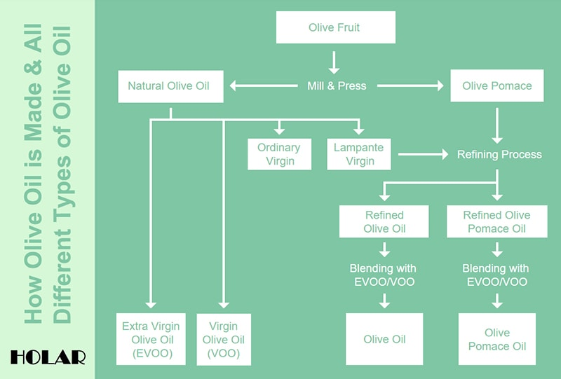 Holar - Blog - The Complete Guide to Understanding the Different Types of Olive Oil - 1