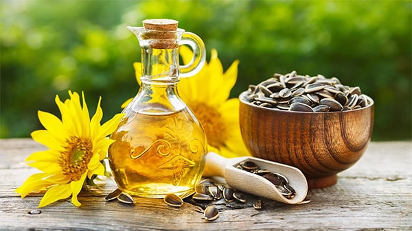 Holar - Blog - What are the uses for different edible oils when cooking - Sunflower Oil