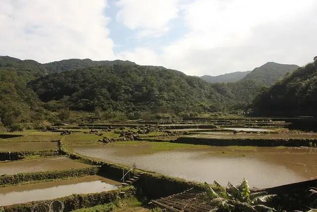 Caoling Historic Trail (草嶺古道) – El paso histórico de Caoling