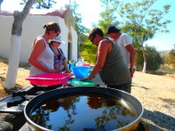 Learn-greek-cooking-during-holiday-on-Crete