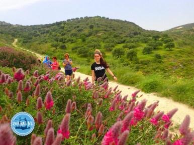 Spring walks on Crete