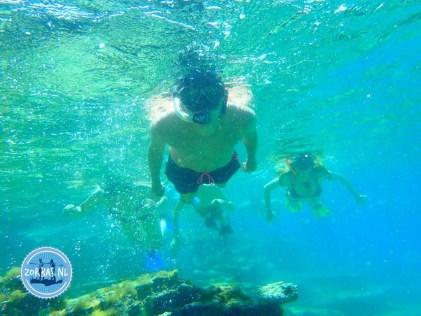 Snorkel in Crete 2022