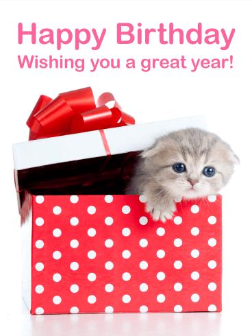 Cute Kitten Birthday Card Birthday Amp Greeting Cards By Davia