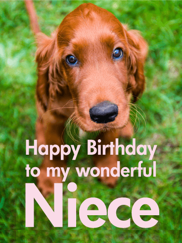 Lovely Dog Happy Birthday Card For Niece Birthday Amp Greeting Cards By Davia