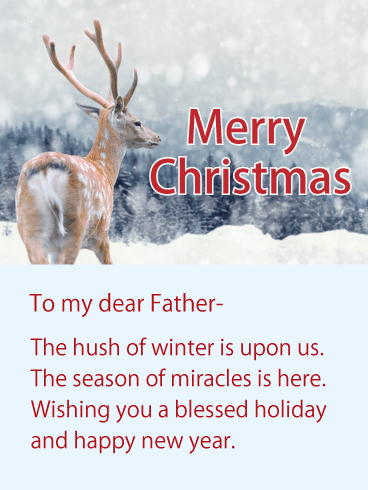 Wishing You A Blessed Holiday Christmas Wishes Card For