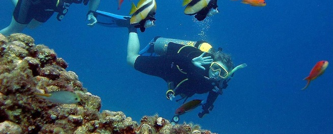 Pulau Gaya diving course