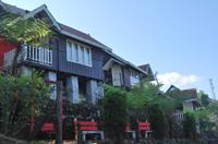 Resort Tree Fern, Lolegaon