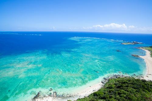 Okinawa Does It Right Holiday Matinee