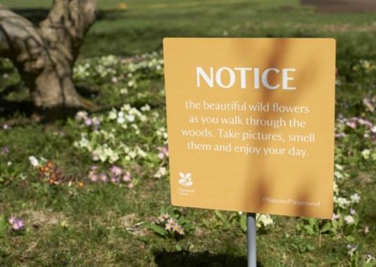 warning-signs-2