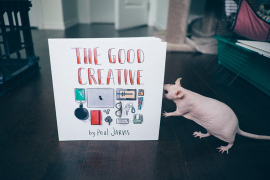 the-good-creative