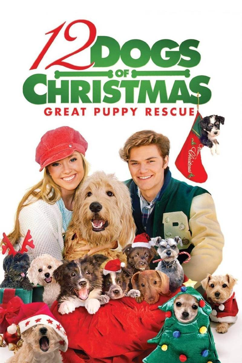 "Poster for the movie ""12 Dogs of Christmas: Great Puppy Rescue"""