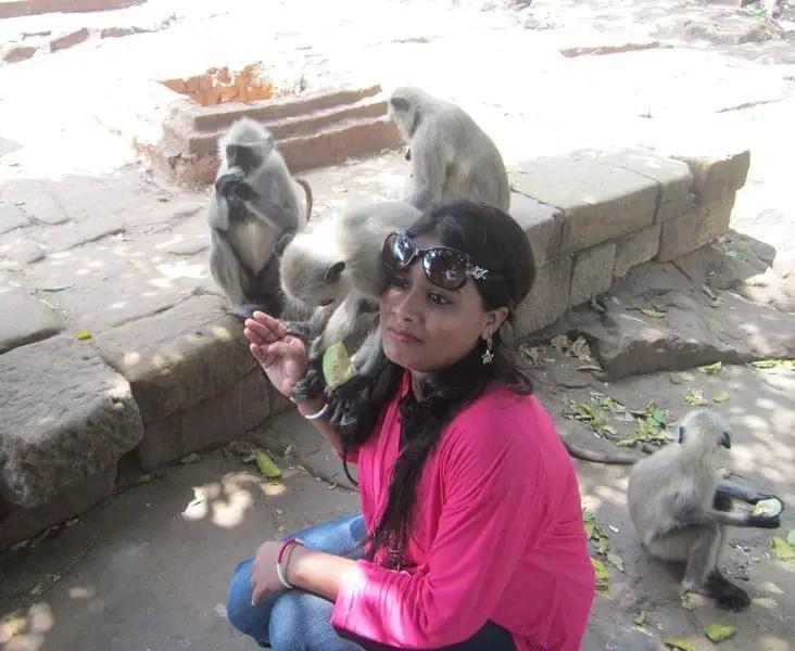 udayagiri monkey bhubaneswar