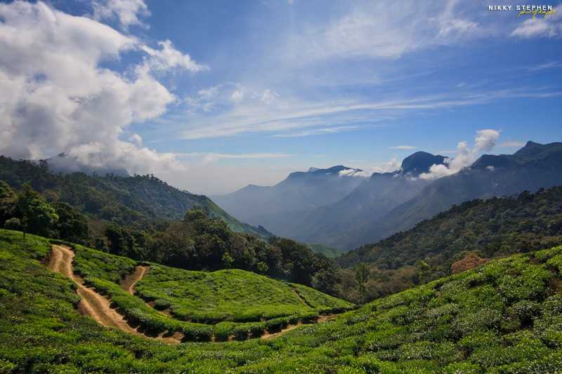 Munnar, Places to visit in August in India